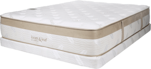 Best Mattress For Baby Boomers - Loom and Leaf