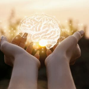brain health and memory supplements