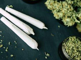 marijuana use among baby boomers