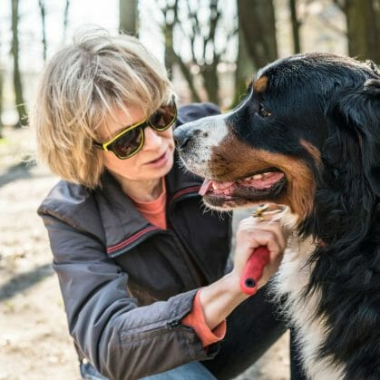 pets for baby boomers