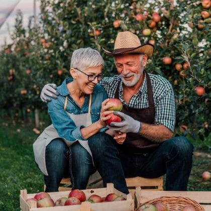 Supplemental Income Options for Retired Baby Boomers